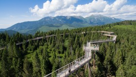 The First Treetop Walk in Slovakia - Bachledka