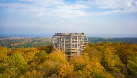 A Treetop Walk on the Island of Rügen in the Baltic Sea
